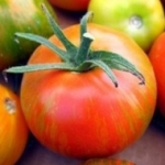 Heirloom_tomato_4